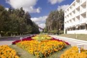 санаторий озеро белое мэрии москвы (6)