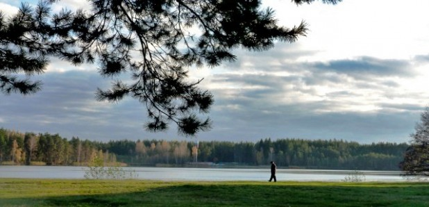 территория озеро белое (9)